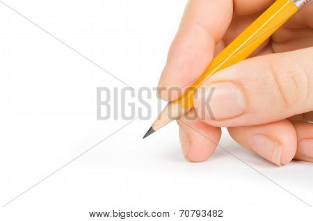Pencil in hand isolated on a white background