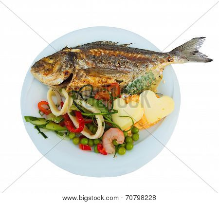 Grilled Fish On White Plate With Herbs Cheese And Shrimp Isolated Over White Background, Top View. M