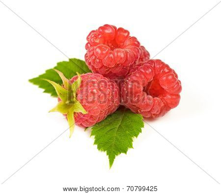 Juicy Red Ripe Raspberry With Green Leaves, Isolated On White