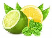 stock photo of mint leaf  - Fresh lime and lemon with leaves and mint - JPG