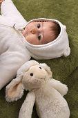 stock photo of baby sheep  - beautiful baby girl with sheep teddy - JPG