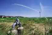 stock photo of sprinkler  - Agricultural irrigation systems - JPG