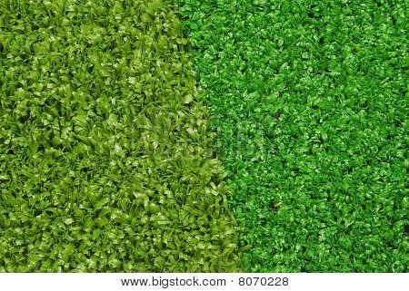 artificial  grass turf selection