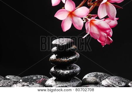 Branch of frangipani with stacked stones with still life