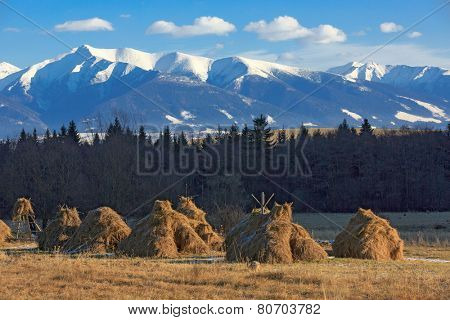 haystack's on meadow on Tatra Mountains background in Slovakia