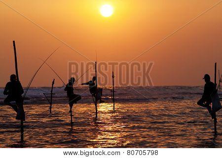 Silhouettes of the traditional stilt fishermen at the sunset near Galle in Sri Lanka