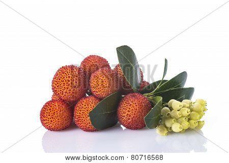 Arbutus Unedo Fruits Isolated On A White Background