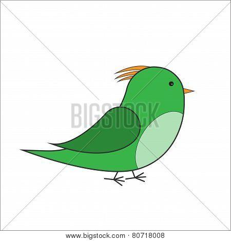 Green bird vector