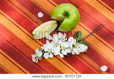 Green Apple With A Branch Of A Blossoming Apple-tree