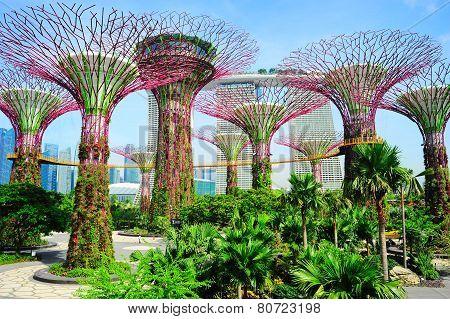 Singapore Modern Park