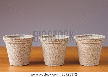 Row of small peat flowerpots on a wooden table
