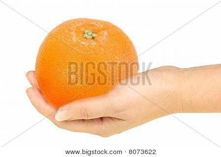 Orange In A Hand