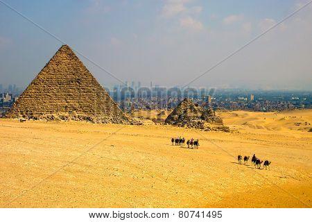 Pyramids And Caravan, Egypt