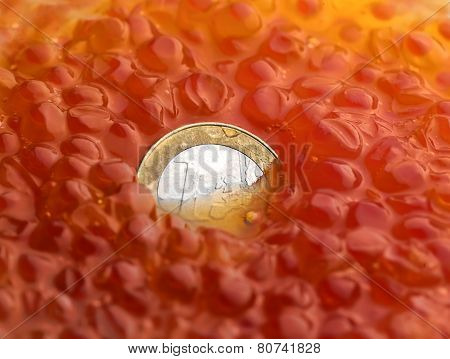 Coin in Caviar
