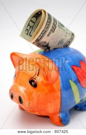 dollar & piggy