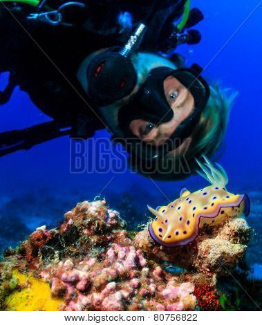 SCUBA diver next to a colorful Nudibranch
