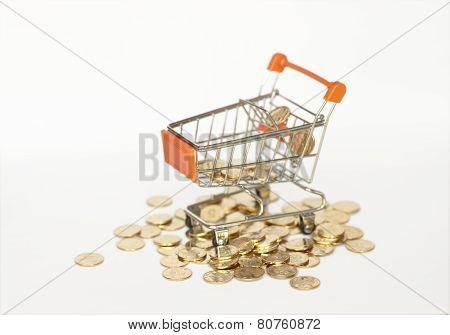 Shopping Cart & Coins