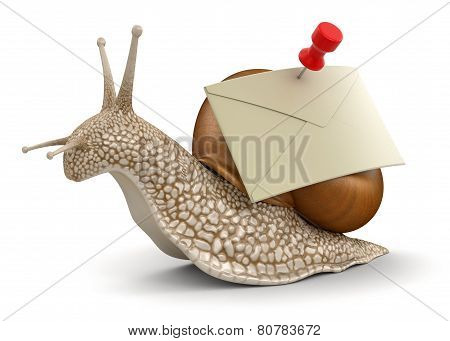 Snail and letter (clipping path included)