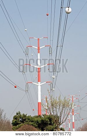 High-voltage line and vegetation, electricity and energy in town