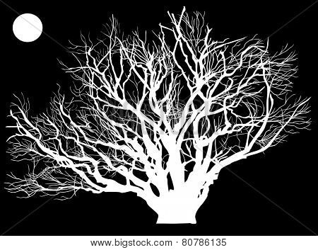 illustration with bare tree under full moon