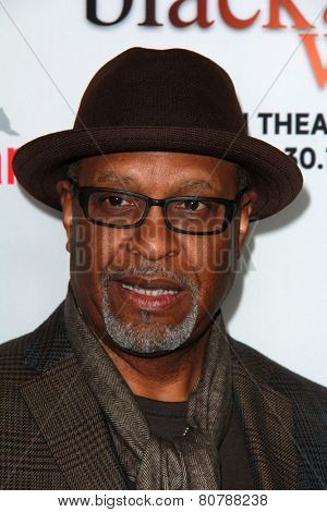 LOS ANGELES - JAN 20:  James Pickens Jr at the