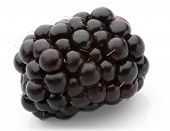 picture of blackberries  - blackberry isolated on white background studio shot ready for package design and advertising - JPG