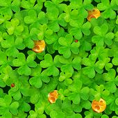 stock photo of triskele  - Saint Patrick - JPG