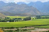 image of south-western  - View to the west from the N1 road to the mountains of the Hex River Valley in the Western Cape Province of South Africa - JPG