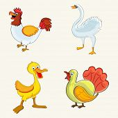 stock photo of turkey-cock  - Set of cute cartoons of colorful birds like hen - JPG