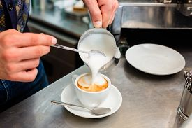 picture of cafe  - Barista in cafe or coffee bar preparing proper cappuccino pouring milk froth in a cup - JPG