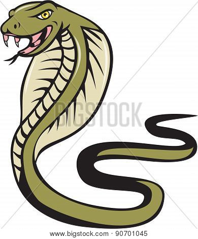 Cobra Viper Snake Attacking Cartoon