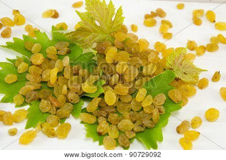 Raisins On The Grape Leaf