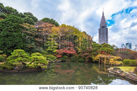 Shinjuku Gyoen Park In Autumn, Tokyo, Japan