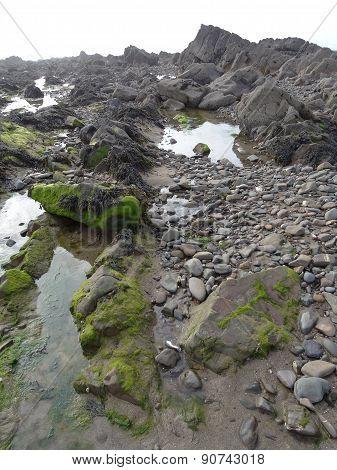 Rocky Beach Seascape