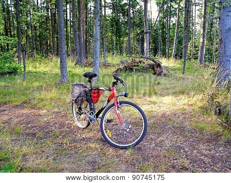 Biking In The Mountains For Health ..