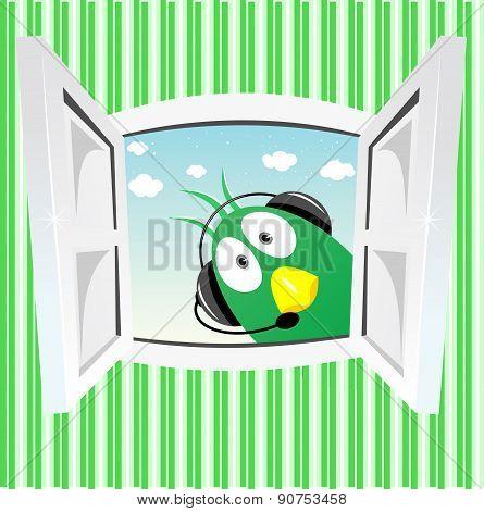 funny green bird looking into open window