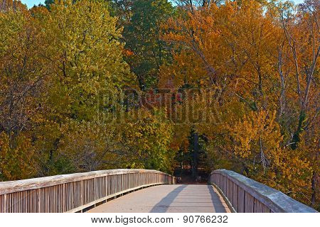 A bridge to Theodore Roosevelt Island Park with trees in autumn foliage in Washington DC USA.