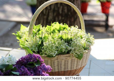 Branches Of A Lilac And Bouquets From Lilies Of The Valley In A Wattled Basket