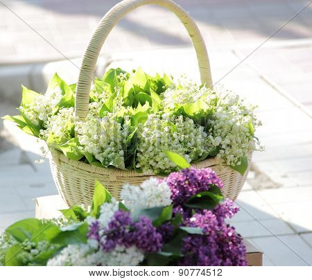 Bouquets From Lilies Of The Valley In A Wattled Basket