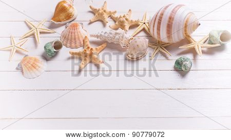 Marine Items On White Wooden Background.