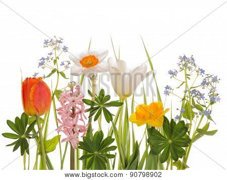 Spring Bright Bouquet