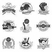 pic of cricket ball  - Baseball cricket golf clubs sport label black set isolated vector illustration - JPG
