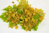 picture of grape leaf  - Bunch of raisins on the grape leaf - JPG