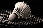 pic of shuttlecock  - white shuttlecock from goose feathers on badminton racket - JPG