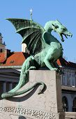 stock photo of dragon  - One of the famous dragons found along the Zmajski Most  - JPG