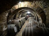 picture of wine cellar  - Ancient wine cellar with wooden wine barrels - JPG
