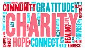 image of word charity  - Charity word cloud on a white background - JPG