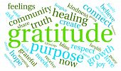 picture of gratitude  - Gratitude word coud on a white background - JPG