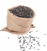 picture of semen  - Close up of black sunflower seeds in bag - JPG
