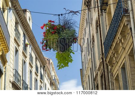 Montpellier (france): Old Buildings